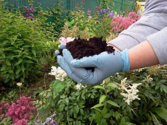 почва, кислотность