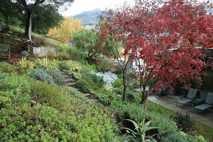 Как сделать сад на склоне